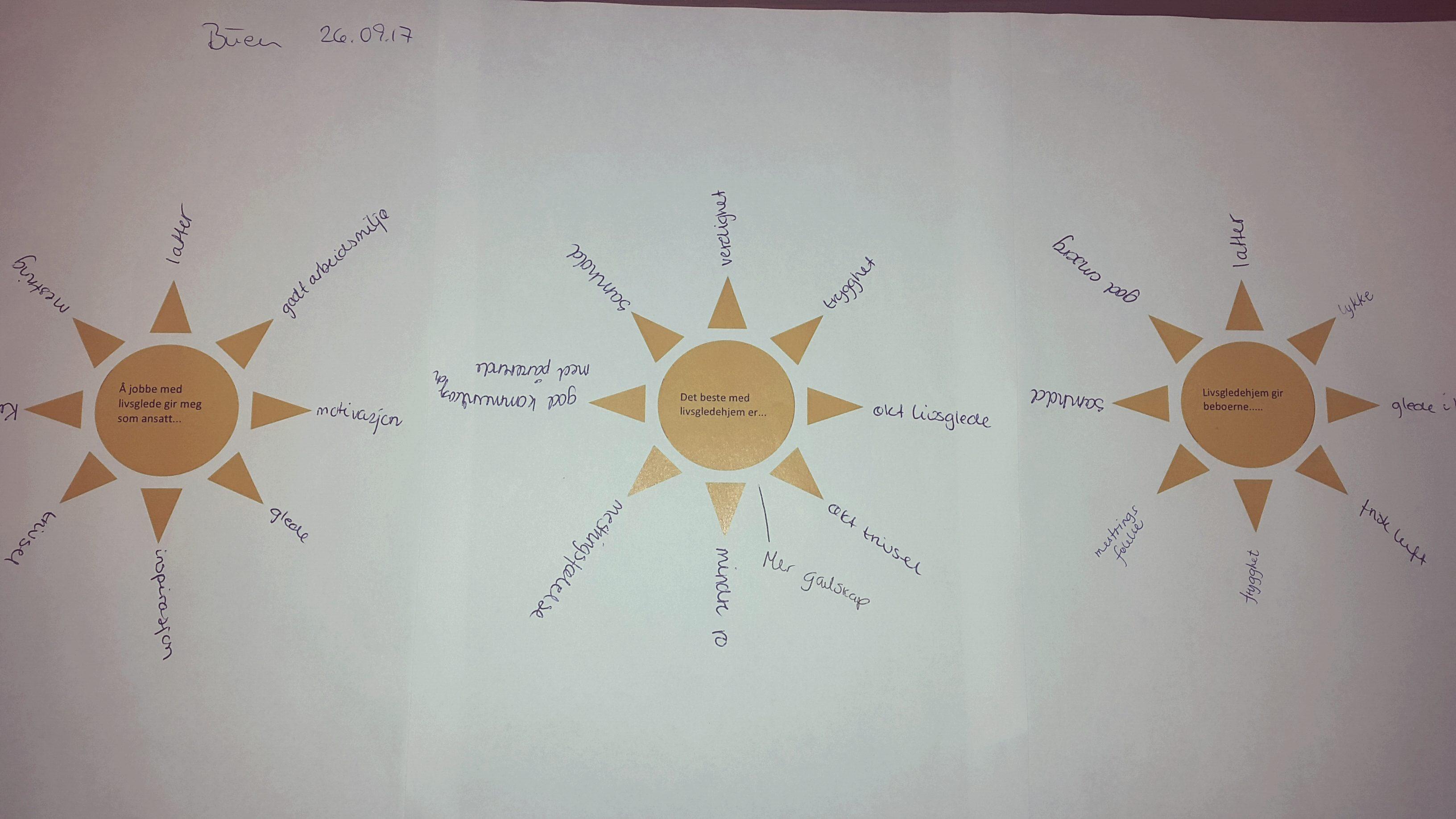 Pedagogisk sol fra Buen forteller om økt mestring, trivsel, glede både for ansatte og beboere.